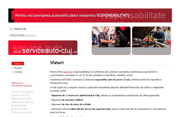 Service auto Cluj
